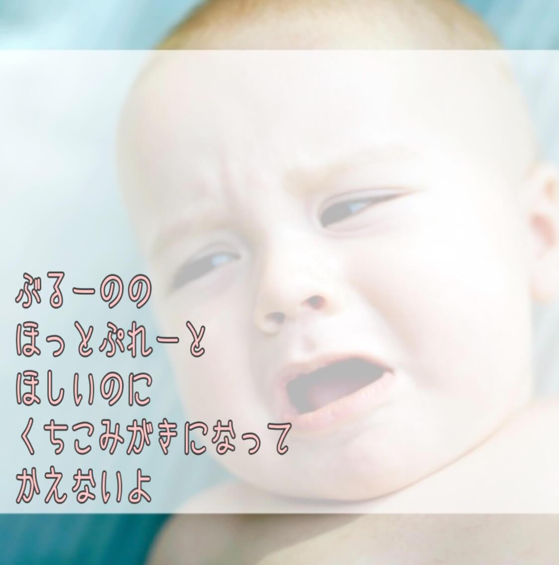 Jp見聞録 BRUNO ブルーノ ホットプレート 口コミ レビュー